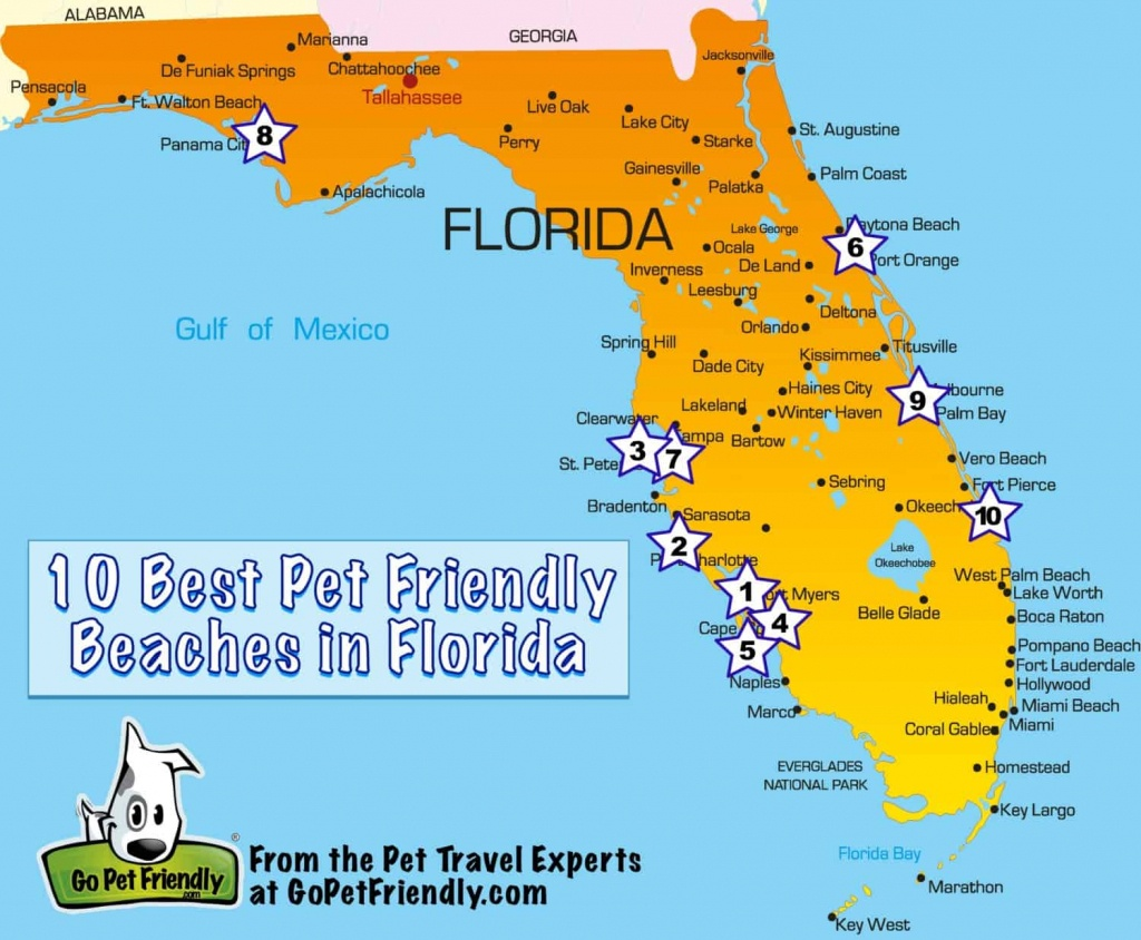 10 Of The Best Pet Friendly Beaches In Florida   Gopetfriendly - Map Of Florida Vacation Spots
