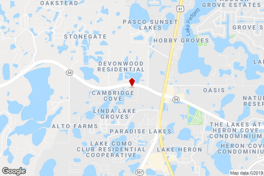 20826 State 54 Rd, Lutz, Fl, 33558 - Commercial Property For Sale On - Lutz Florida Map