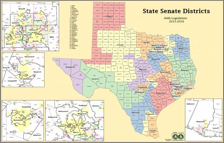 Texas Senate District 16 Map