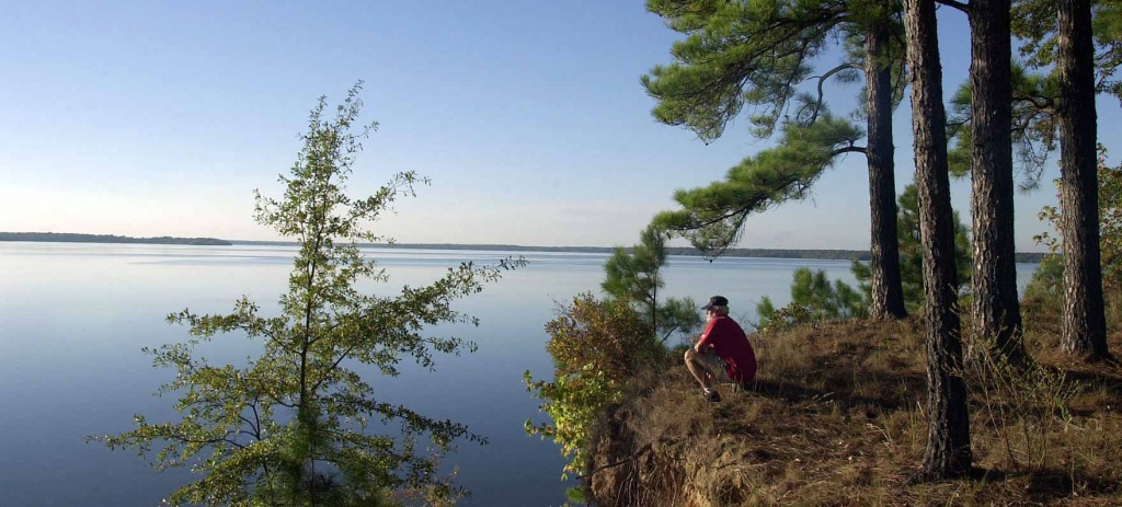 Atlanta State Park — Texas Parks & Wildlife Department - Texas State Campgrounds Map