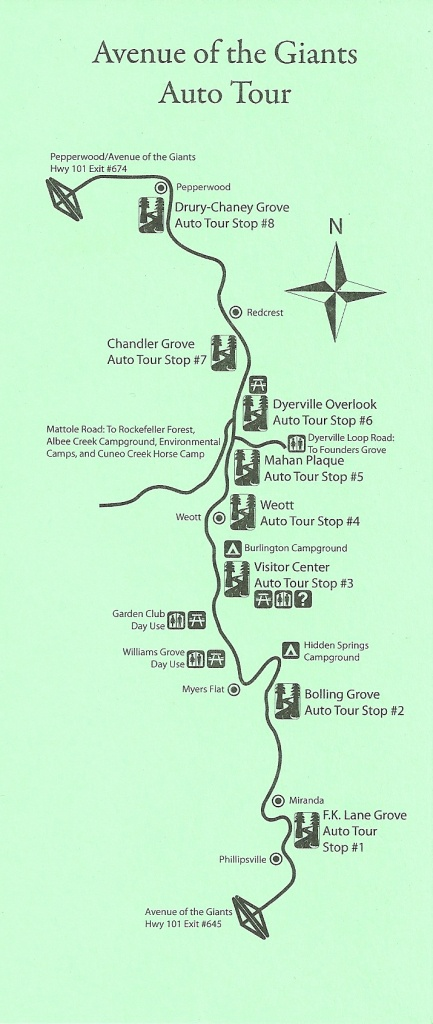 Avenue Of The Giants Auto Tour Map - Avenue Of The Giants - Avenue Of The Giants California Map