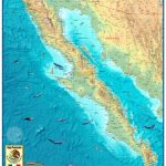 Baja Wall Map   The Map Shop   Baja California Topographic Maps