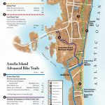 Bicycling On Amelia Island   Amelia Island, Florida | Travel In 2019   Amelia Island Florida Map