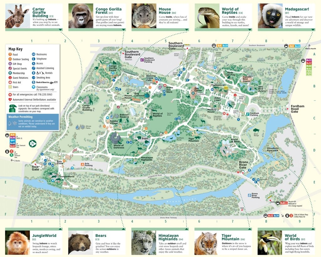 Bronx Zoo - Maplets - Bronx Zoo Map Printable