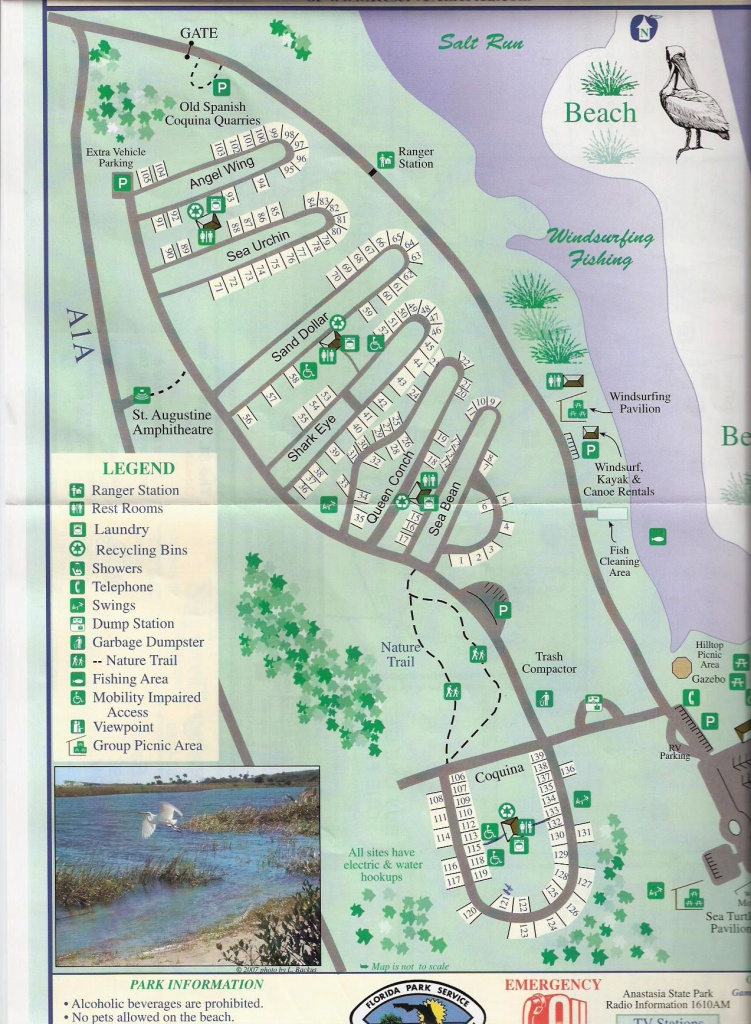 Campground Map - Anastasia State Park - St. Augustine - Florida - Florida State Parks Rv Camping Map