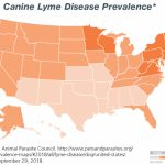 Canine Lyme Disease | Merck Animal Health   Parvo Outbreak Map 2017 California