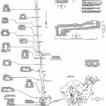 Caveatlas » Cave Diving » United States » Twin Caves   Florida Cave Diving Map