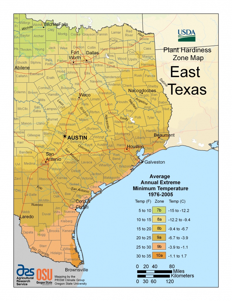 Cold Hardiness Zone Map | - Texas Garden Zone Map