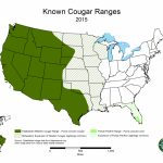 Cougars In Tennessee   State Of Tennessee, Wildlife Resources Agency   Mountain Lions In Texas Map