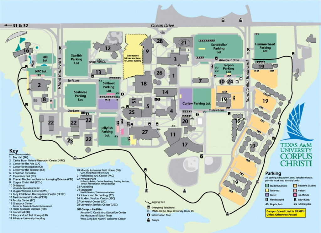 Faculty, Regents, And Administration - Texas A&m University Corpus - Texas State University Housing Map