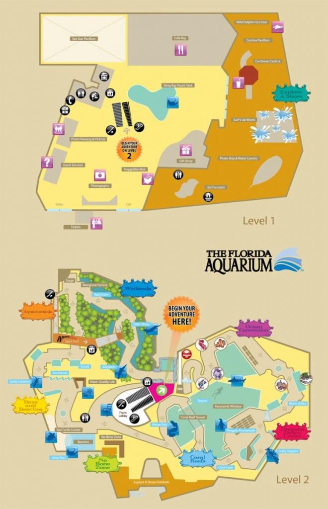 Florida Aquarium - Aquarium In Tampa Florida - Florida Aquarium Map