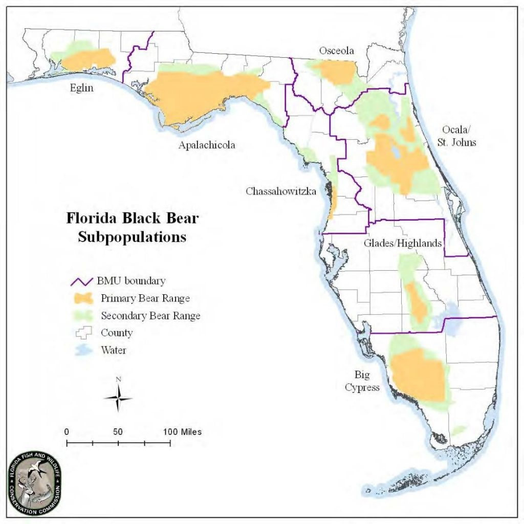 Florida Black Bear – Bear Conservation - Bears In Florida Map