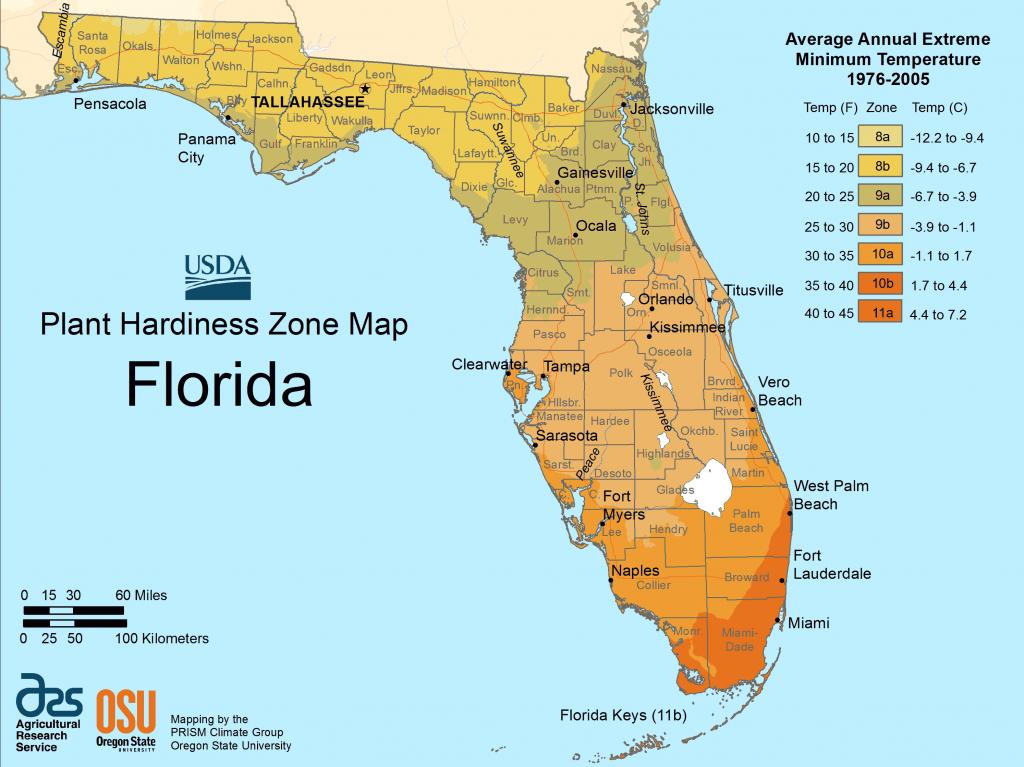 Florida Plant Hardiness Zone Map • Mapsof - Florida Elevation Map By Address