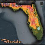 Florida Topographic Map   Florida Elevation Map