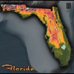 Florida Topography Map | Colorful Natural Physical Landscape - Florida Land Elevation Map