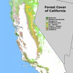 Forest Cover Map Of California [871 × 1232] : Mapporn   Where Is The Redwood Forest In California On A Map