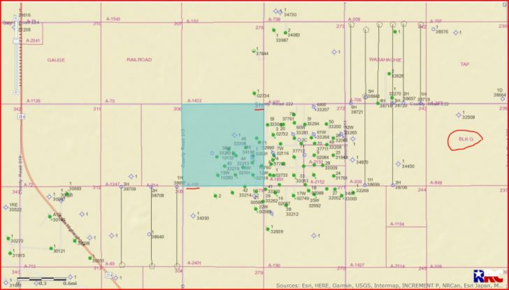 Gaines County Texas Section Map