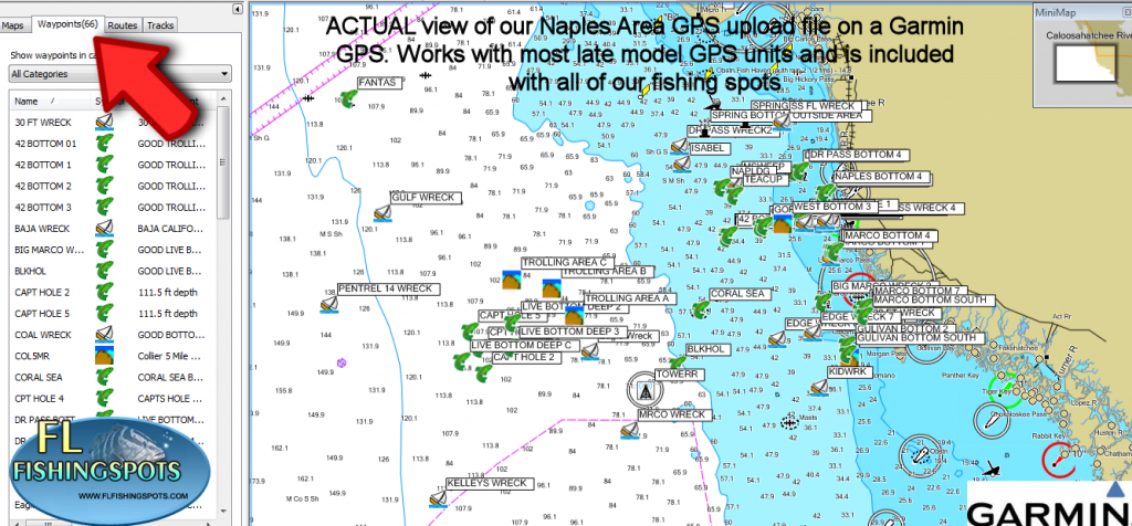 Garmin Saltwater Fishing Maps « Guide To Coastal Georgia Fishing - Hot Spot Maps Florida