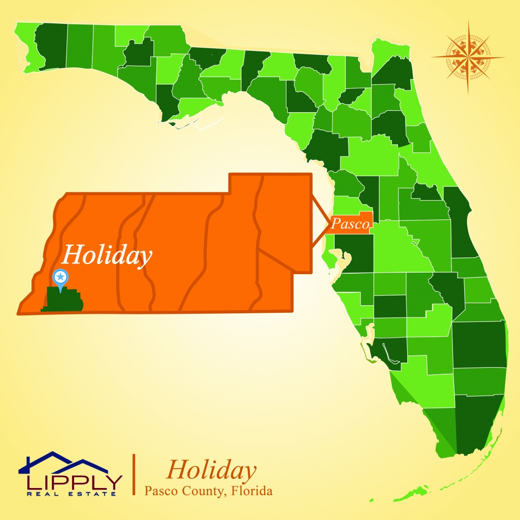 Holiday Fl Subdivisions Homes And Condos Pasco County - Mls Listings Florida Map