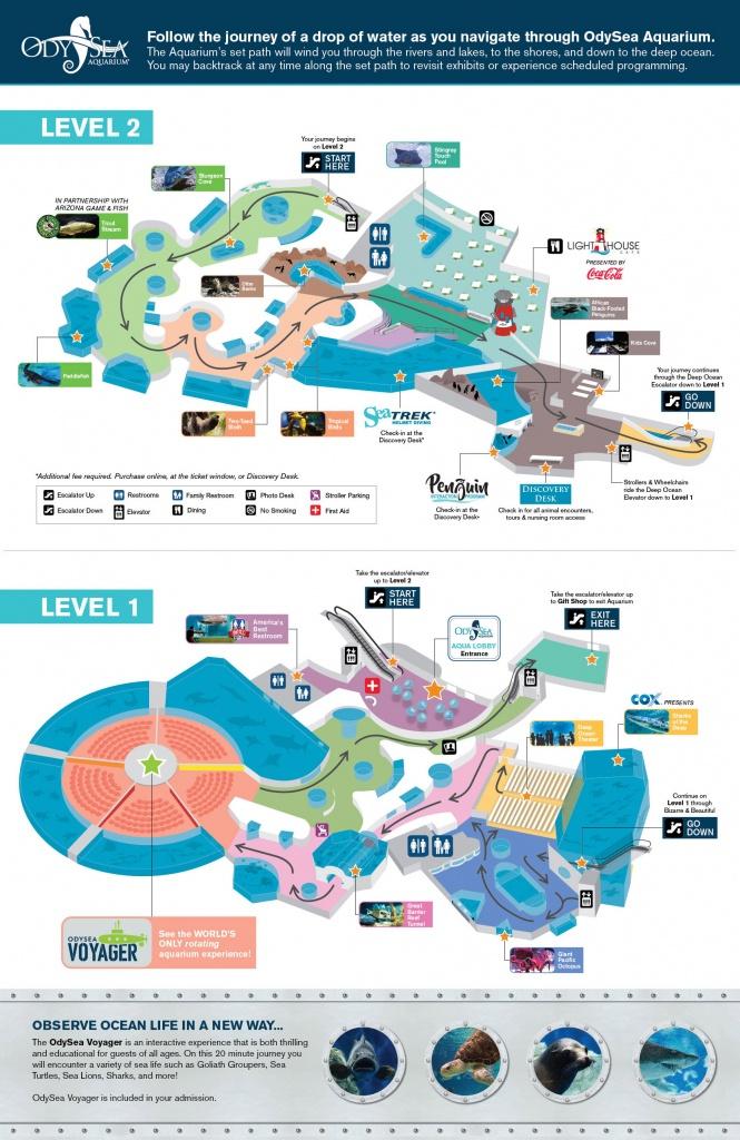 Hours And Visit Info For Odysea Aquarium - Florida Aquarium Map