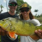 How To Find And Catch Peacock Bass In South Florida - Peacock Bass Florida Map