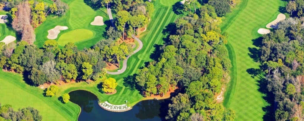 Innisbrook Fl Real Estate Listings And Homes For Sale, Home Buying - Innisbrook Florida Map