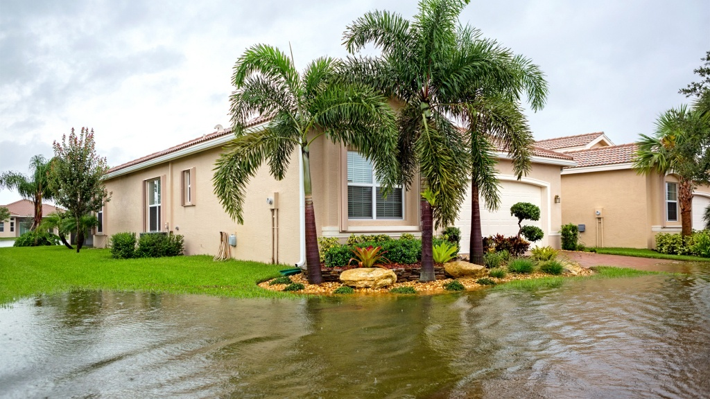 Is My Property In A Flood Zone?' The Easiest Way To Know | Realtor® - Naples Florida Flood Zone Map
