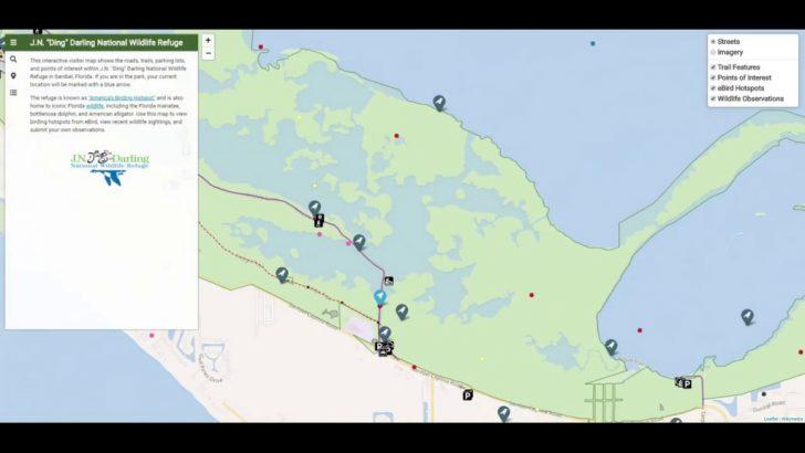 Alligator Point Florida Map
