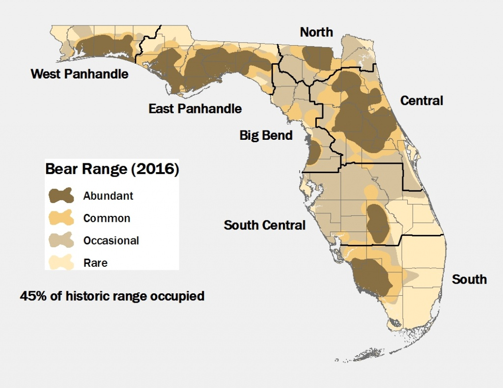 Lesson Ten: Oh Where, Oh Where Is The Florida Black Bear? - Black - Bears In Florida Map