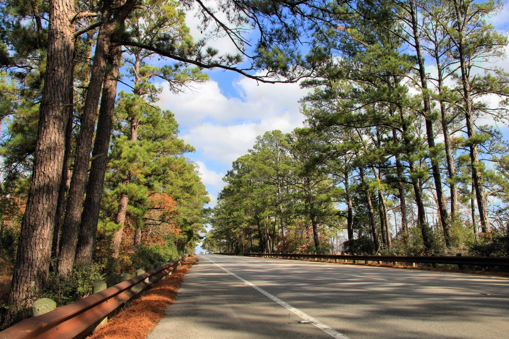 Lost Pines Forest - Wikipedia - Lost Pines Texas Map