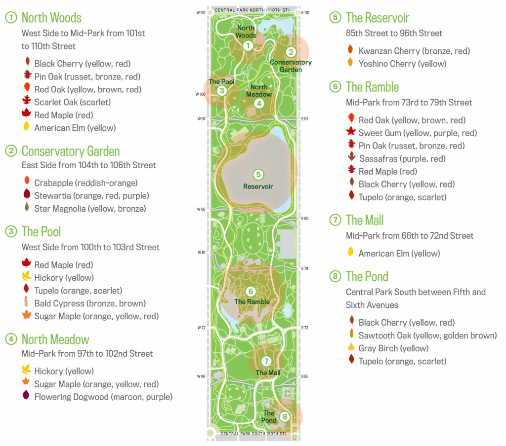 Map Of Central Park New Your City Central Park Zoo Attraction Free - Printable Map Of Central Park