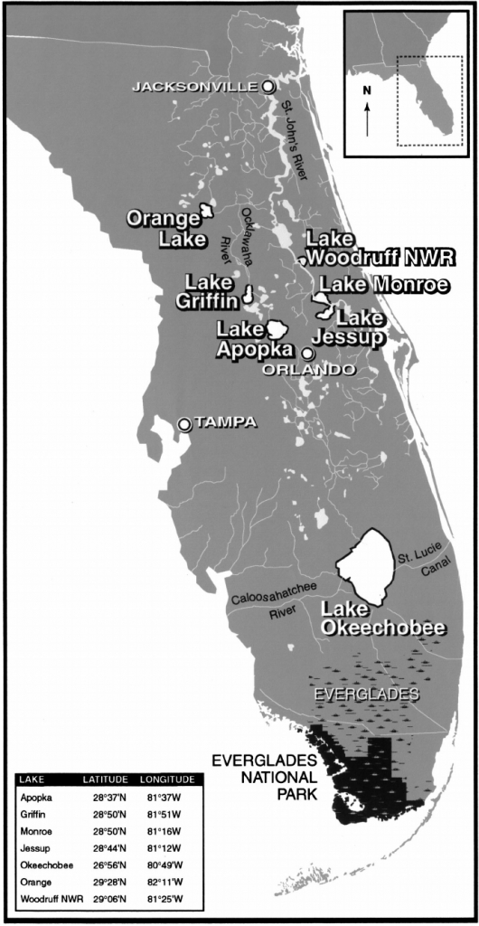 Map Of Florida Showing The Everglades And The Study Lakes   Download - Map Of Florida Showing The Everglades