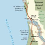 Map Of Pacific Coast Through Redwood National Park. | Pacific Coast   Where Is The Redwood Forest In California On A Map
