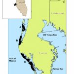 Map Of Study Area (Pinellas County Barrier Islands) | Download   Map Of Pinellas County Florida