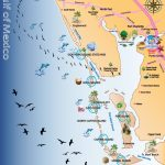 Map Out Your Next Vacation In The Florida Gulf! | Gulf Island Tours   Florida Vacation Map