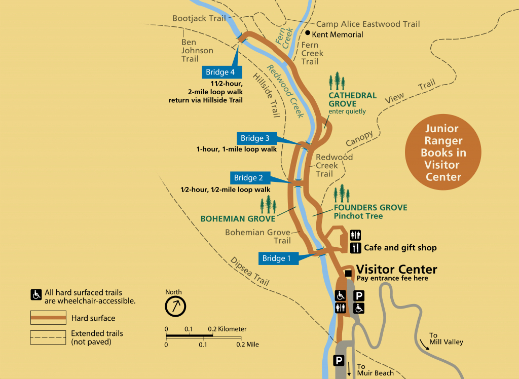 Muir Woods Main Trail - Golden Gate National Recreation Area (U.s. - Muir Woods Map California