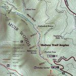 Muir Woods   Muir Woods Map California