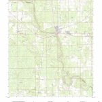 Mytopo Branford, Florida Usgs Quad Topo Map   Branford Florida Map