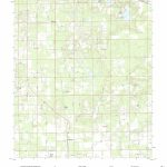 Mytopo Mcalpin, Florida Usgs Quad Topo Map   Mcalpin Florida Map