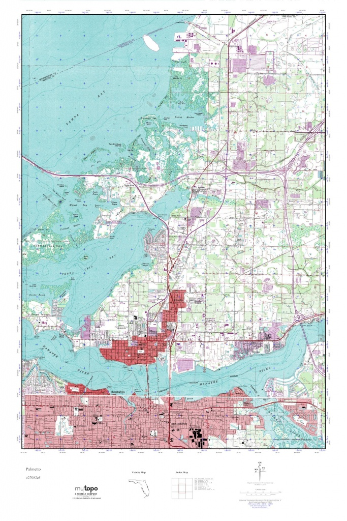 Mytopo Palmetto, Florida Usgs Quad Topo Map - Palmetto Florida Map
