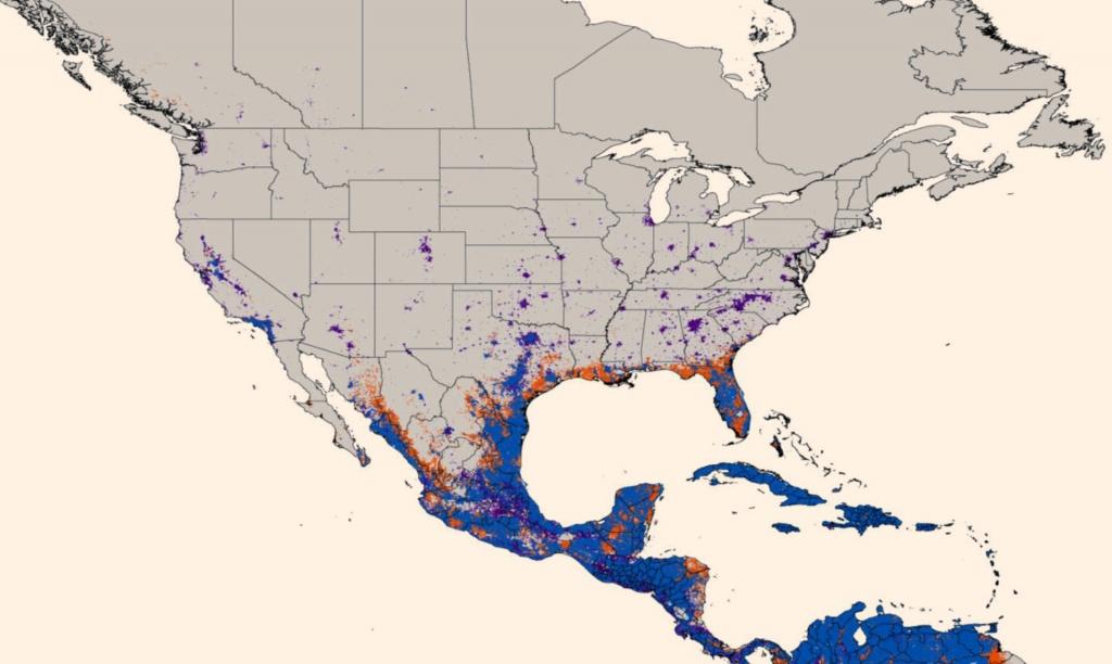New Map Predicts Spread Of Zika Virus | Medicine | Sci-News - Texas Zika Map