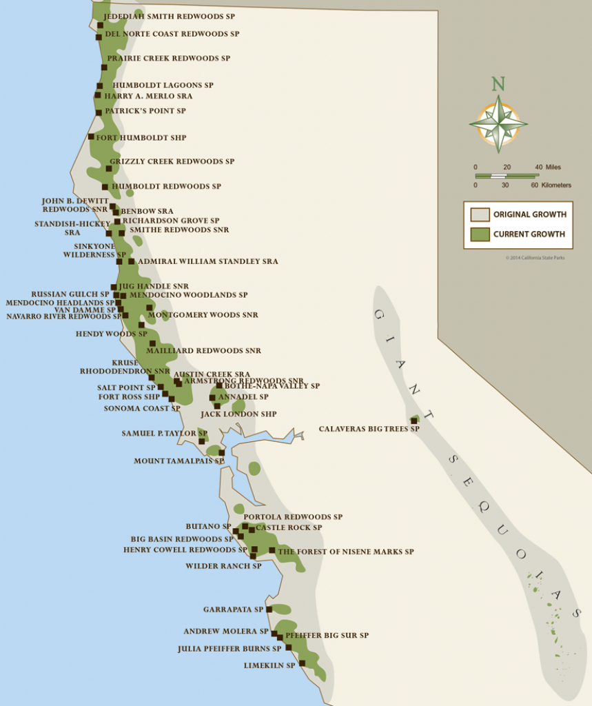 North Coast Redwoods Map   California Girl In 2019   Humboldt - Camping Northern California Coast Map