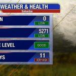 North Dallas Weather   Pollen Map Texas
