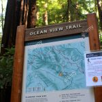 Ocean View Trail Sign And Map, Muir Woods National Monument, Mill   Muir Woods Map California