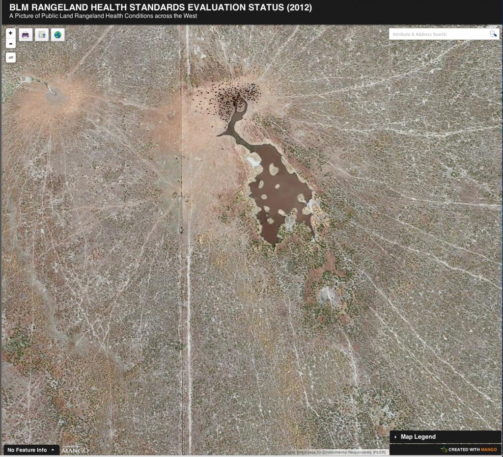 Peer - Blm Grazing Data Interactive Map - Blm Land Florida Map