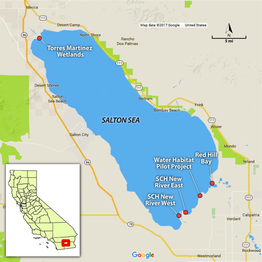 Pinphotoman3 On Salton Sea | Salton Sea, Water Management, Map - Salton Sea California Map