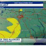 Pollen Making A Comeback In East Texas   Pollen Map Texas