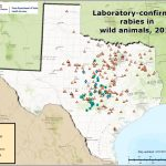 Rabies Maps For 2016   Aaa Texas Maps