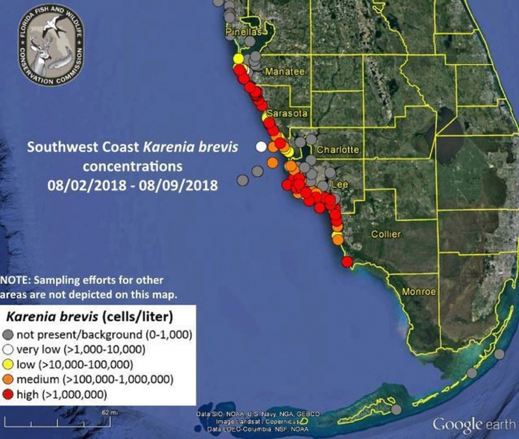 Red Tide Update: Florida Governor Issues Emergency Order - Al - Current Red Tide Map Florida