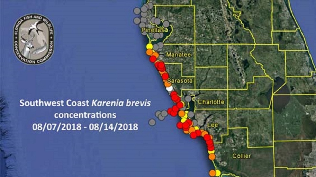 Red Tide Update: Respiratory Irritation Reported In Pinellas - Map Of Sw Florida Beaches